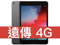 Ipad mini wifi 190326 0003