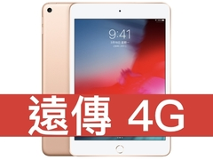 Ipad mini lte 190326 0003